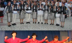 festivalul national de interpretare mugurelul