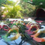 europa_summer_garden_-_hotel_europa_botosani_(2)