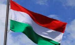 steag-ungaria